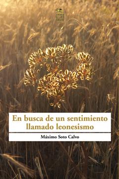 Máximo Soto Calvo